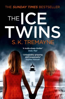 783004-the-ice-twins